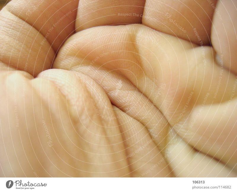 GIB MIR CASH! (AM BESTEN FREITAGS) Mensch Hand Haut Armut Finger Wunsch Hautfalten Falte nehmen Hilfsbedürftig Bildausschnitt Anschnitt Hilfesuchend Almosen