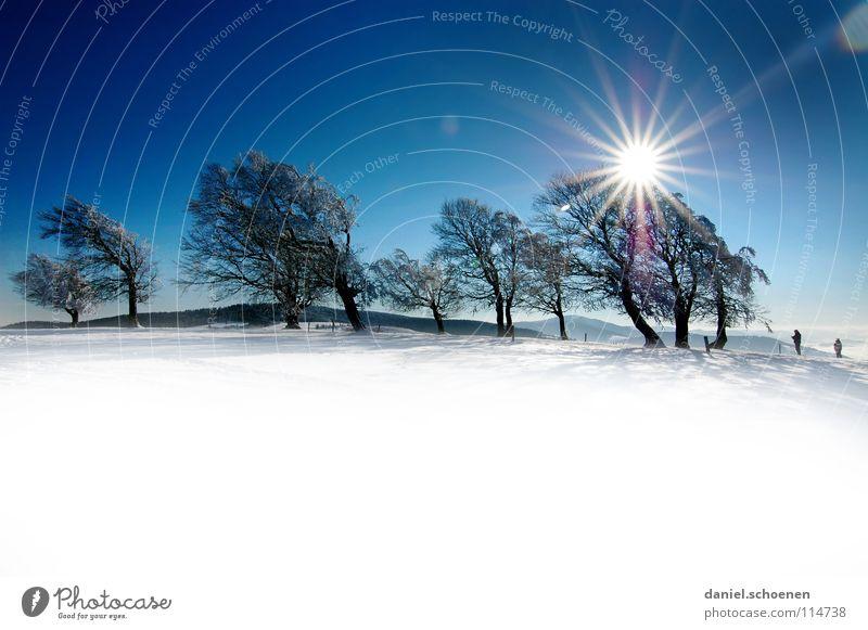 Weihnachtskarte 23 Himmel Natur Ferien & Urlaub & Reisen blau weiß Baum Sonne Einsamkeit Winter Berge u. Gebirge kalt Schnee Hintergrundbild Deutschland
