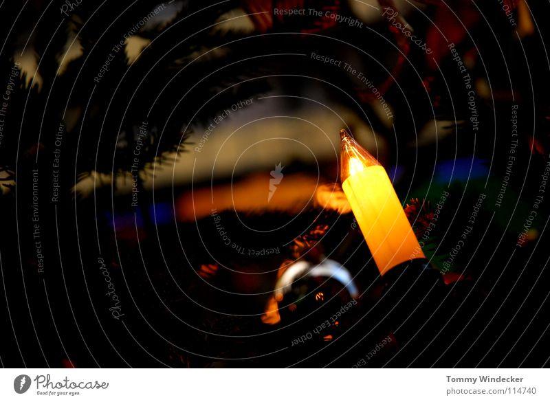 Stille Nacht Weihnachten & Advent Freude Winter Beleuchtung Feste & Feiern glänzend Dekoration & Verzierung süß Kerze Überraschung Weihnachtsbaum Kugel Schmuck Tanne Vorfreude Backwaren