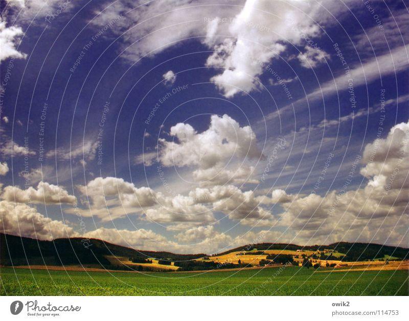 Himmel über Hochkirch Natur Himmel Baum Wolken Wald Wiese Berge u. Gebirge Landschaft Stimmung Feld Deutschland Wind Erde Bodenbelag Landwirtschaft