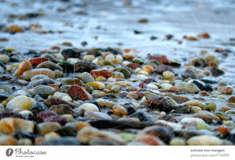 schärfen l untiefen Meer See Strand rot gelb finden Ebbe fließen ruhig Gezeiten Herbst Winter Stein Küste Wasser Sand Nordsee Farbe Flut Felsen Makroaufnahme