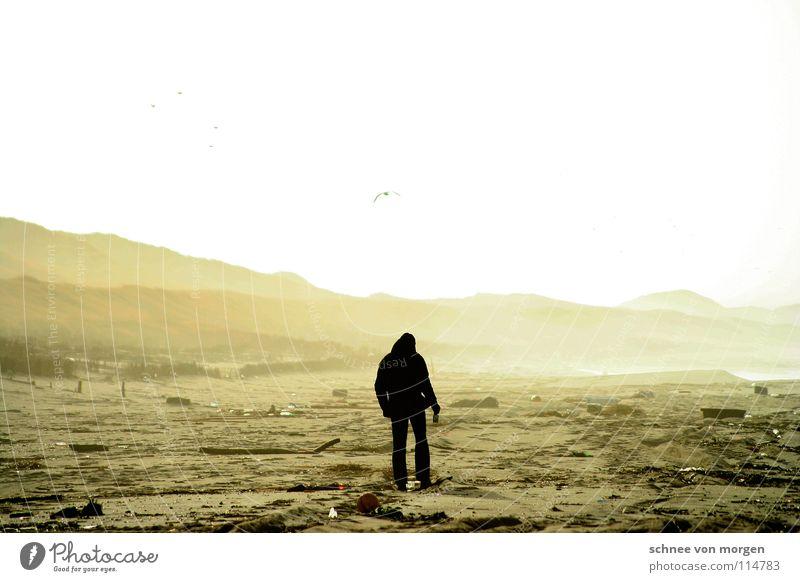 sturm l untiefen See Meer Mann Sturm Leidenschaft Nebel Strandgut Bauschutt Holz Wellen Licht Winter kalt Sylt hell gelb gehen Küste Erde Sand Wetter Sonne