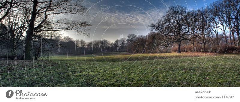 Parklandschaft Panorama Baum Wiese Garten Landschaft Panorama (Bildformat) HDR Dynamikkompression