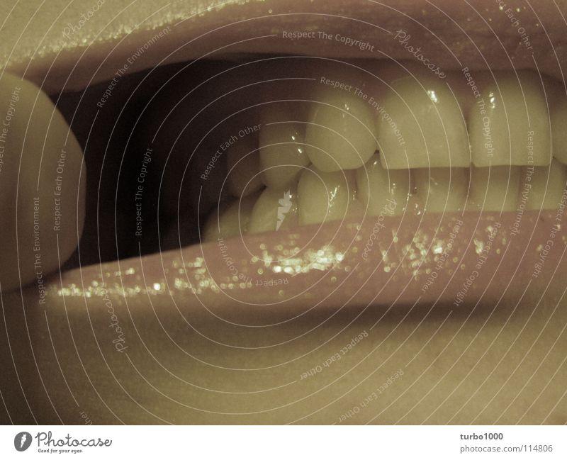 v o r r a t s k a m m e r Ernährung Gesundheit Mund Reinigen Zähne Lippen Gastronomie Schmerz Sammlung Körperpflege ziehen Zahnarzt Arzt beißen Kiefer entzünden