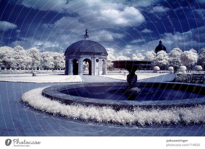 Hofgarten Wasser weiß Baum Wiese Gras Park Rasen offen Brunnen Springbrunnen Infrarotaufnahme