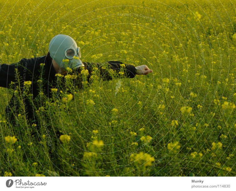 Die Seuche bricht aus! Hand grün Pflanze Blume Freude schwarz Ferne Landschaft gelb Herbst Spielen grau Blüte lustig Horizont Glas