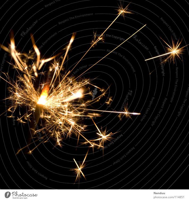 Pusteblume Silvester u. Neujahr Wunderkerze Jubiläum brennen Nacht dunkel Stern (Symbol) schön glänzend Hintergrundbild schwarz sprühen zündend Euphorie