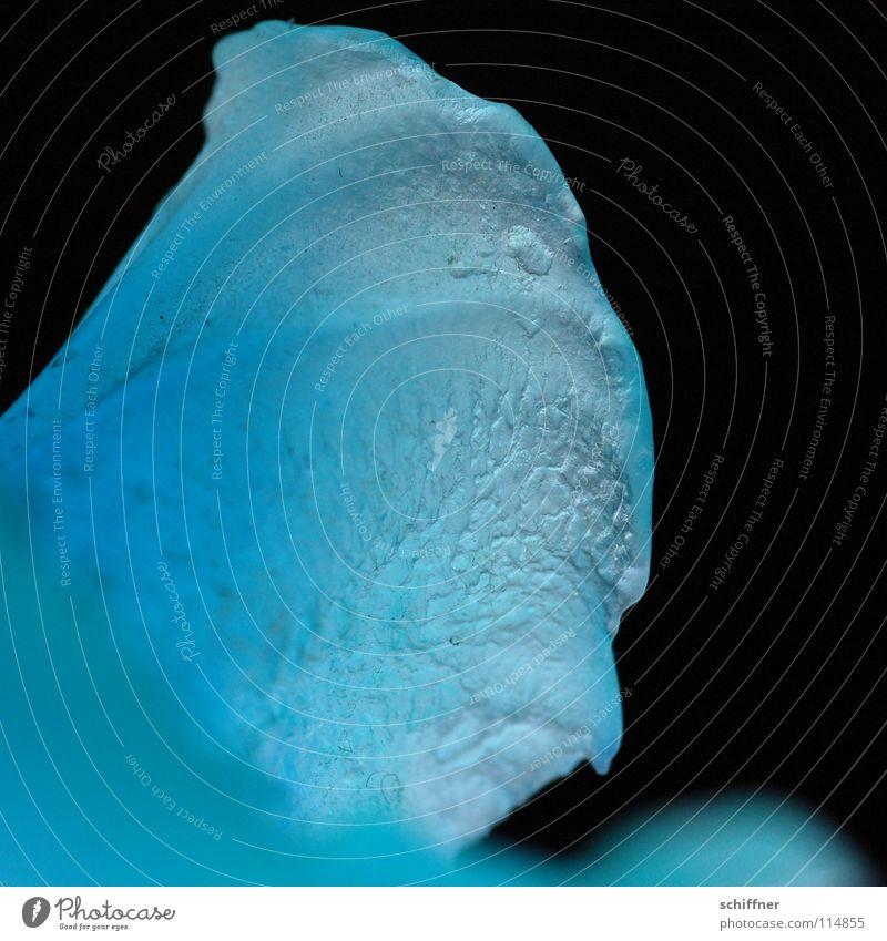 U PC O 4 schwarz Dinge Makroaufnahme Nahaufnahme blau unidentifiziert kryptisch Spekulation Strukturen & Formen