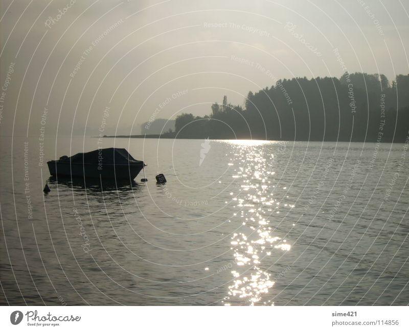 Herbststimmung Einsamkeit See Wasserfahrzeug Europa Schweiz Jahreszeiten