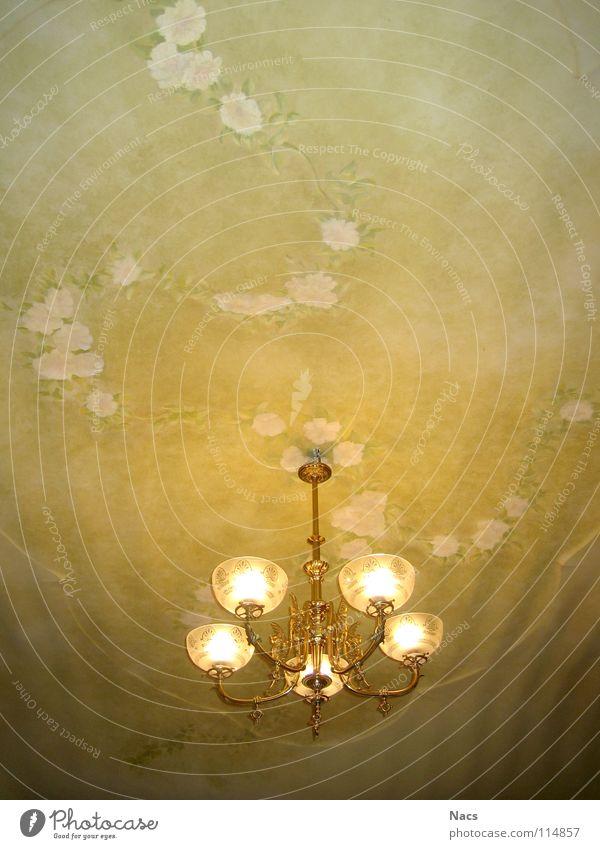 Deckenlampe alt Blume grün Pflanze ruhig Blatt gelb Lampe Leben Gebäude hell Raum glänzend Glas Design gold