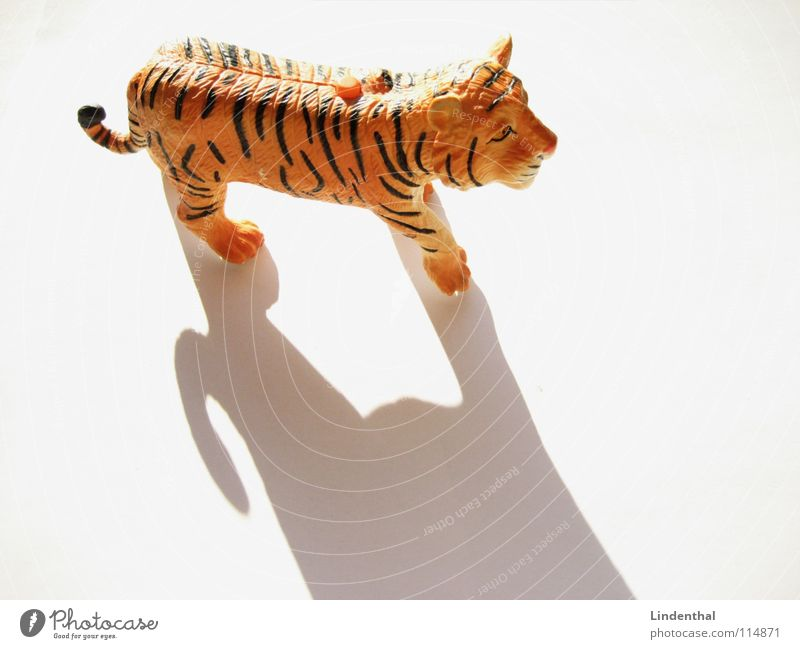 TIGER Tiger Tier Landraubtier Fell gestreift Spielzeug böse drücken Pfote Schwanz Säugetier Schatten Statue