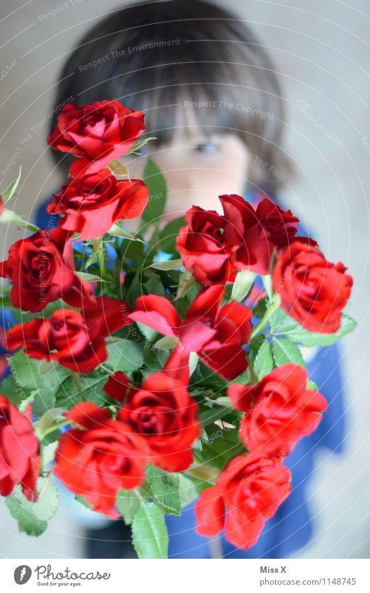 Kuss Mensch Kind rot Blume Gefühle Liebe Junge Feste & Feiern Stimmung Kindheit Geburtstag Blühend Romantik Rose Blumenstrauß Duft