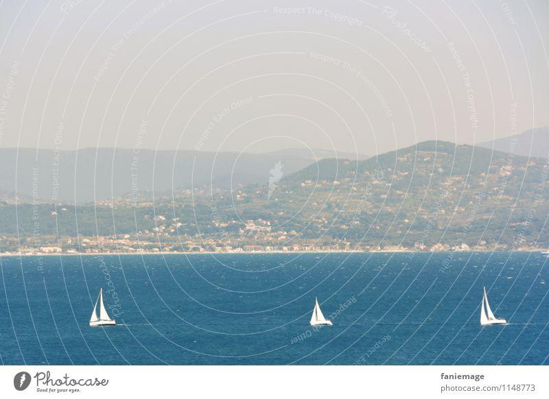Wettsegeln Umwelt Natur Landschaft Himmel Frühling Sommer Küste Meer fahren blau weiß Wasserfahrzeug Schifffahrt Segeln Segelboot Sportveranstaltung Konkurrenz