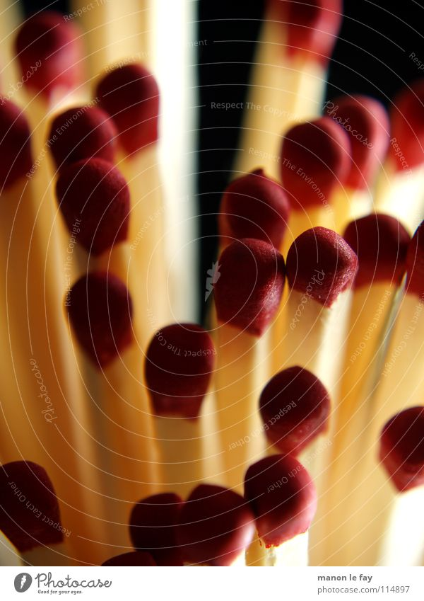 Zenana rot schwarz weiß Streichholz Physik Schwefel Makroaufnahme Nahaufnahme Kaminhölzer Brand Wärme Flamme