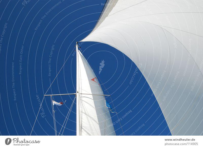 Vollzeug Segeln Blauer Himmel Sommer blau-weiß Wassersport Wind Halbwind Tag am Meer