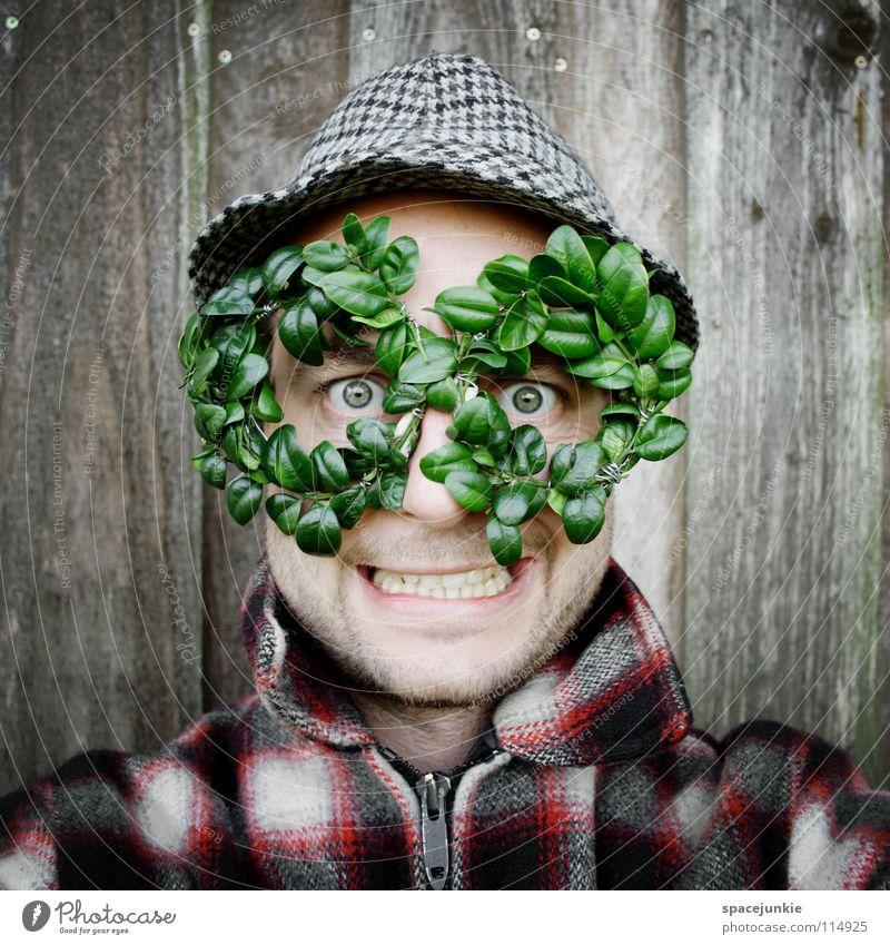 Grüne Brille Mann Natur grün Freude Blatt Wand Holz Hut skurril Bekleidung Freak Humor Durchblick Buchsbaum