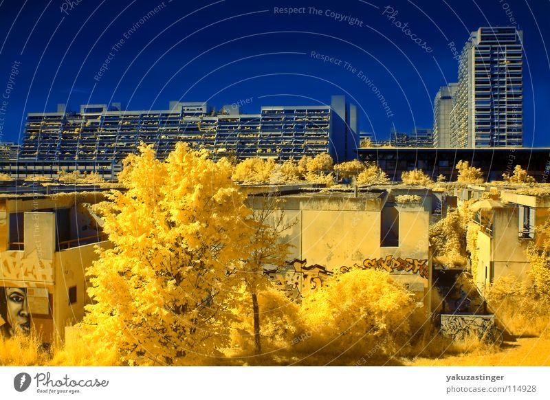 Conollystrasse gelb Infrarotaufnahme Farbinfrarot Baum Sträucher Beton Olympisches Dorf Israel Terror Fassade Balkon Langzeitbelichtung blau Channelshifting
