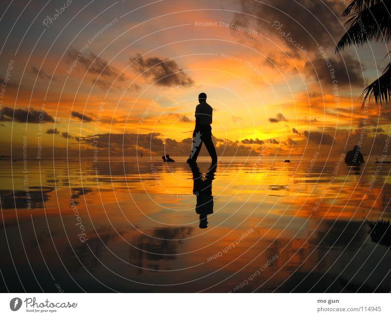 walking on water Himmel Natur Ferien & Urlaub & Reisen Mann Wasser Sonne Meer Freude Gefühle Glück Sonnenuntergang oben gehen orange Zufriedenheit genießen
