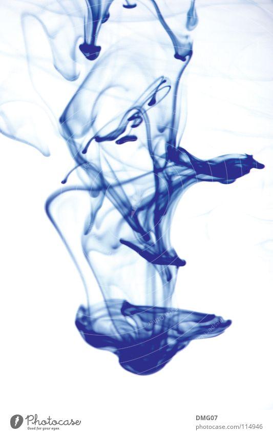 Ink 001 blau Wasser weiß schön Farbe Erholung Leben Gefühle Bewegung Stil Wassertropfen ästhetisch Lifestyle Wellness Fluss Blühend