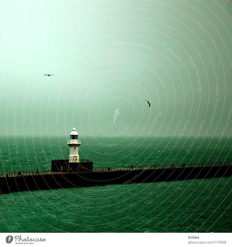 Weisser Leuchtturm an der nebligen Nordsee Orientierung begleiten Begleiter sozial gehen England Nebel Möwe Meer grün dunkel Strahlung Horizont ungewiss Fernweh