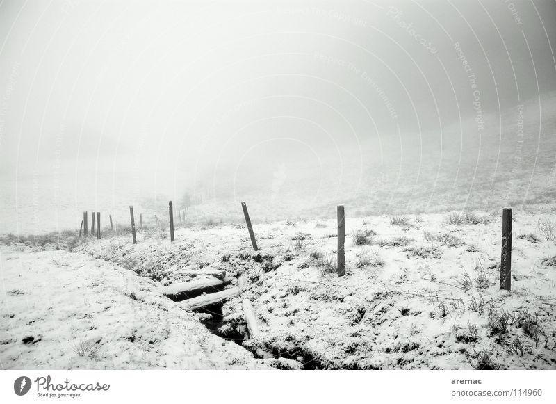 Nebeltal weiß Winter schwarz Schnee Berge u. Gebirge Landschaft Alpen Allgäu