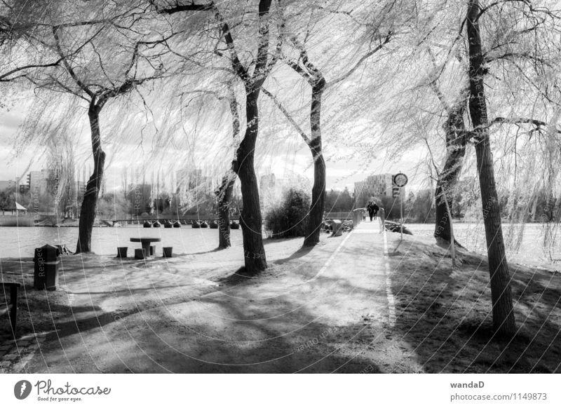 ___________ Natur Stadt weiß Baum Erholung schwarz Traurigkeit Frühling Wege & Pfade grau Denken See gehen hell Park träumen