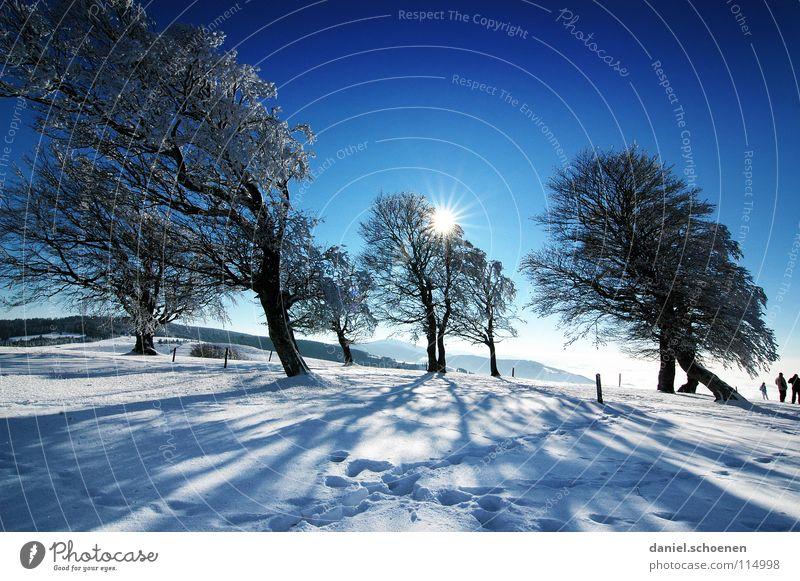 Weihnachtskarte 24 Himmel Natur Ferien & Urlaub & Reisen blau weiß Baum Sonne Einsamkeit Winter Berge u. Gebirge kalt Schnee Hintergrundbild Deutschland