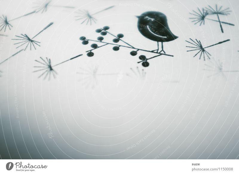 Das kleine Schwarze Einsamkeit schwarz Traurigkeit lustig Stil Stimmung Vogel Design träumen Freizeit & Hobby dreckig Kreativität einfach Idee Papier