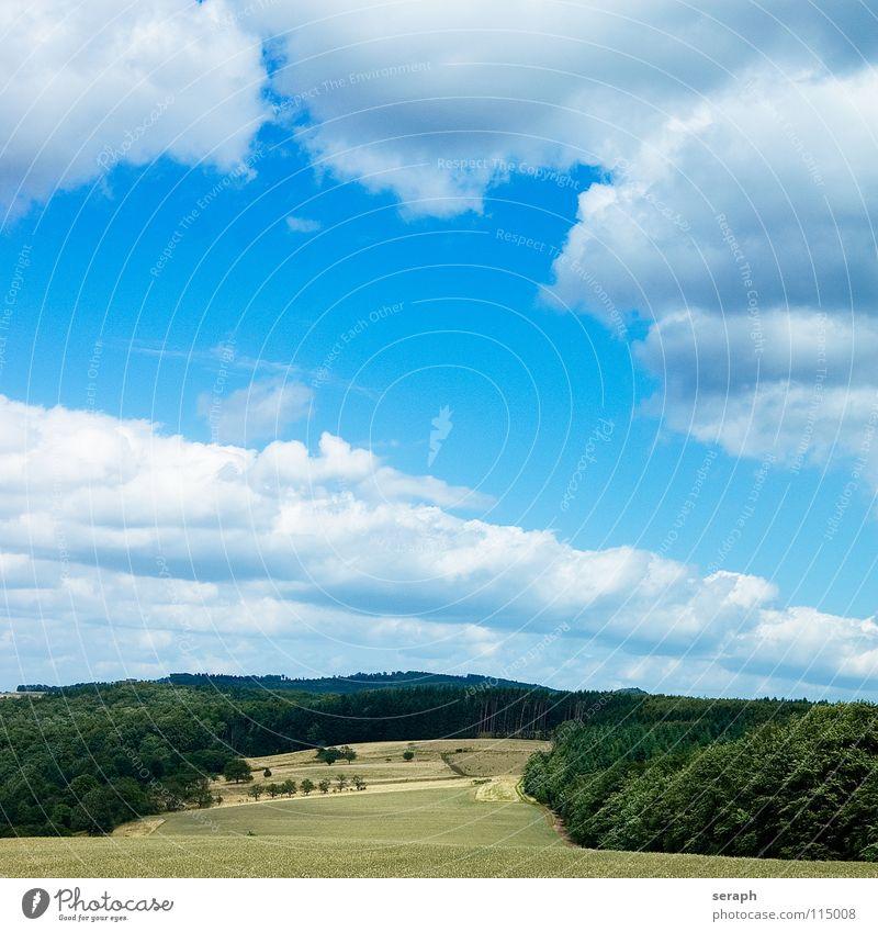 Landschaft Himmel Natur grün Sommer Baum Erholung ruhig Wolken Ferne Wald Umwelt Wiese Gras natürlich Freiheit