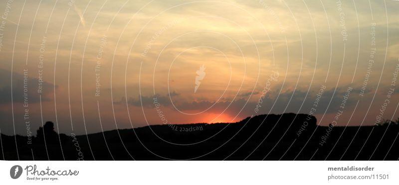 Abendhimmel #2 Streifen Nacht Silhouette Panorama (Aussicht) Baum stehen brennen Licht schwarz gelb Wellen Hügel Wolken Romantik Luft Himmel Sonne shape heaven