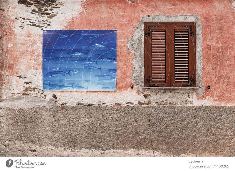 Fische fangen Ferien & Urlaub & Reisen Stadt Wasser Meer Haus Fenster Leben Wand Essen Mauer Lifestyle genießen Italien Schutz Neugier Fisch