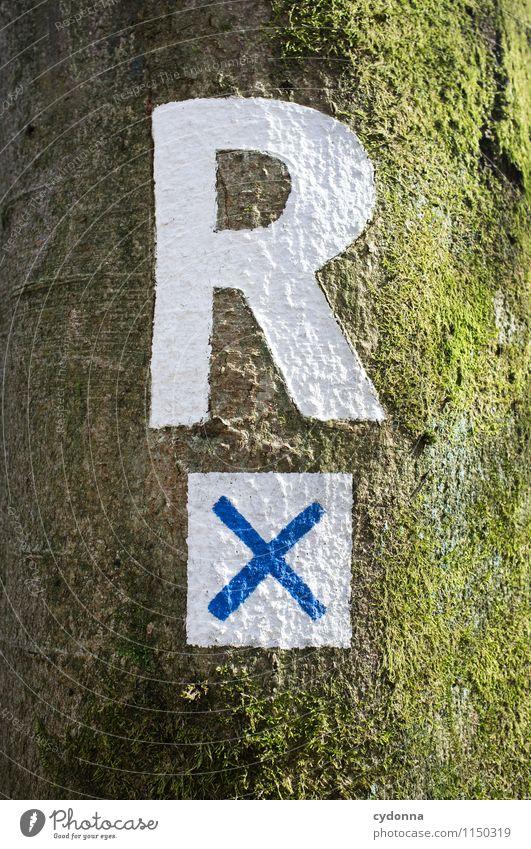 Rennsteig Leben Ferien & Urlaub & Reisen Tourismus Ausflug wandern Umwelt Natur Baum Zeichen Schriftzeichen Schilder & Markierungen entdecken Erwartung