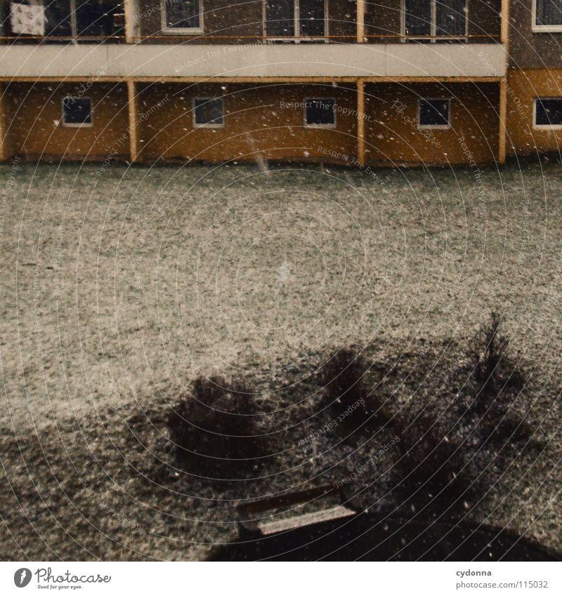 Und alles wird leiser alt Winter ruhig Haus Einsamkeit Leben kalt Wiese Gefühle Tod Schneefall Traurigkeit Gebäude Deutschland Fassade