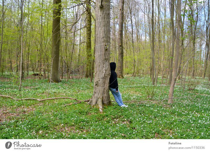 Meine Stütze Mensch feminin Mädchen Junge Frau Jugendliche Kindheit 1 Umwelt Natur Landschaft Pflanze Frühling Schönes Wetter Baum Blume Wald hell natürlich