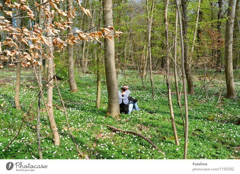 Märchen Mensch feminin Mädchen Junge Frau Jugendliche Kindheit 1 8-13 Jahre Umwelt Natur Landschaft Pflanze Frühling Baum Blume Wald frei hell natürlich braun
