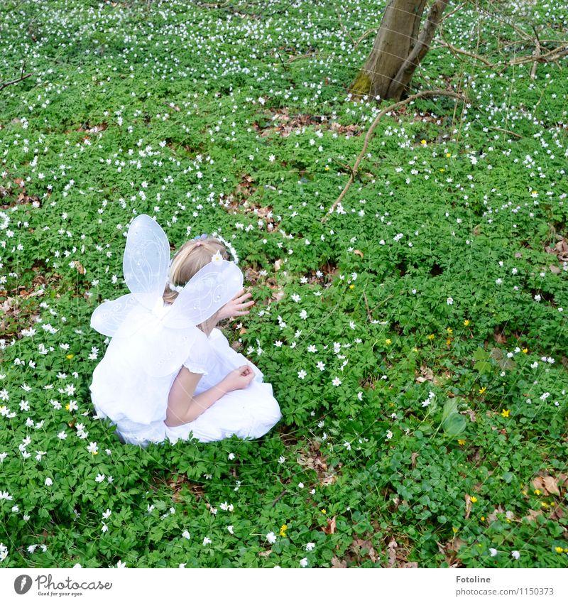 Flügelchen Mensch feminin Kind Mädchen Kindheit Kopf Arme 1 Umwelt Natur Pflanze Frühling Schönes Wetter Blume Park Wald hell natürlich grün weiß Fee Elfe