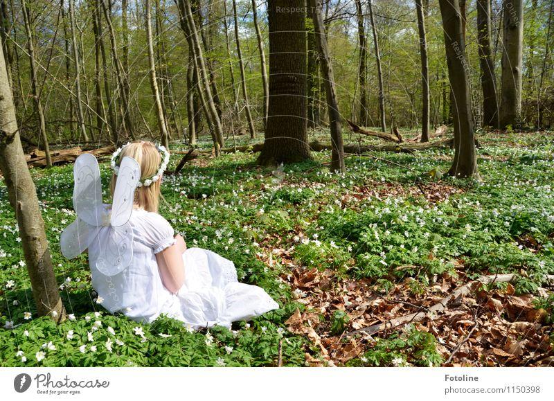 Waldelfe Mensch Kind Natur Pflanze grün weiß Baum Blume Mädchen Wald Umwelt Wärme Frühling natürlich feminin Haare & Frisuren