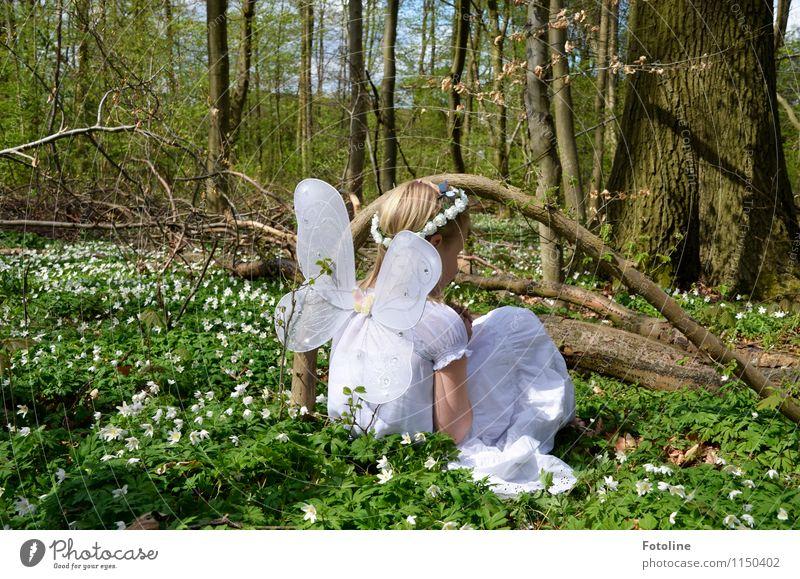 Tinkerbells Freundin Mensch feminin Kind Mädchen Kindheit 1 frei Glück hell schön nah natürlich Wärme grün weiß Fee Elfe Blumenkranz Flügel Farbfoto