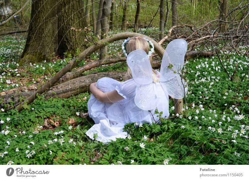 Feenwiese Mensch feminin Kind Mädchen Kindheit 1 Umwelt Natur Landschaft Pflanze Frühling Baum Blume Wald frei nah natürlich grün weiß Elfe Flügel Farbfoto