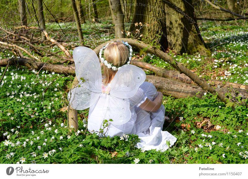 Flügelwesen Mensch feminin Kind Mädchen Kindheit Körper Kopf Haare & Frisuren 1 Umwelt Natur Landschaft Pflanze Frühling Schönes Wetter Baum Blume Blüte Wald