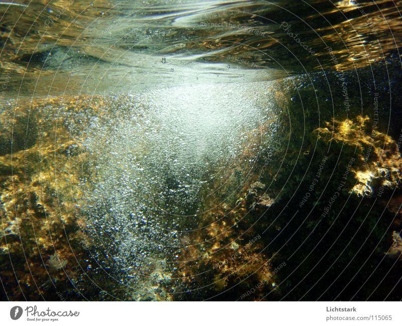 atme II Wasser Meer Leben Spielen Stein Luft Wellen Bildung blasen atmen Algen Sauerstoff