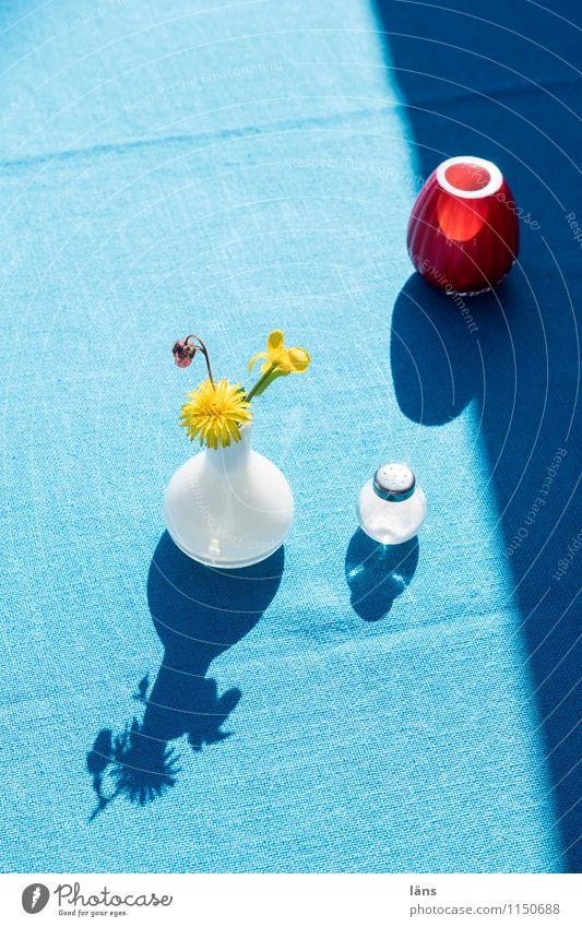 komm Schatz Lifestyle Dekoration & Verzierung Tisch Terrasse Feste & Feiern Frühling Blume Blühend authentisch einfach natürlich Reinlichkeit Sauberkeit