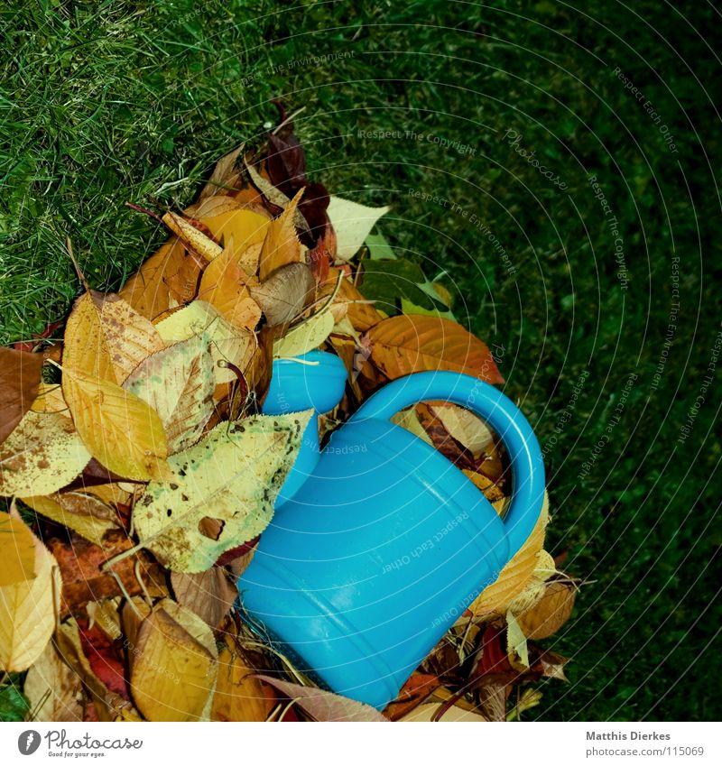 Gießkanne Ferien & Urlaub & Reisen blau grün schön Sommer Wasser Baum Erholung Wolken ruhig Freude dunkel Traurigkeit Herbst Wiese Beleuchtung