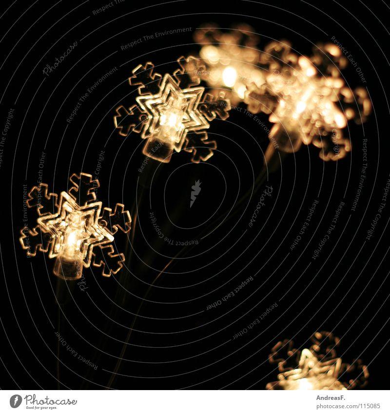 Polarsternchen Weihnachten & Advent Winter Lampe kalt Schnee Eis Beleuchtung Stern (Symbol) Kitsch Eiskristall Schneeflocke Weihnachtsdekoration Weihnachtsmarkt Lichterkette