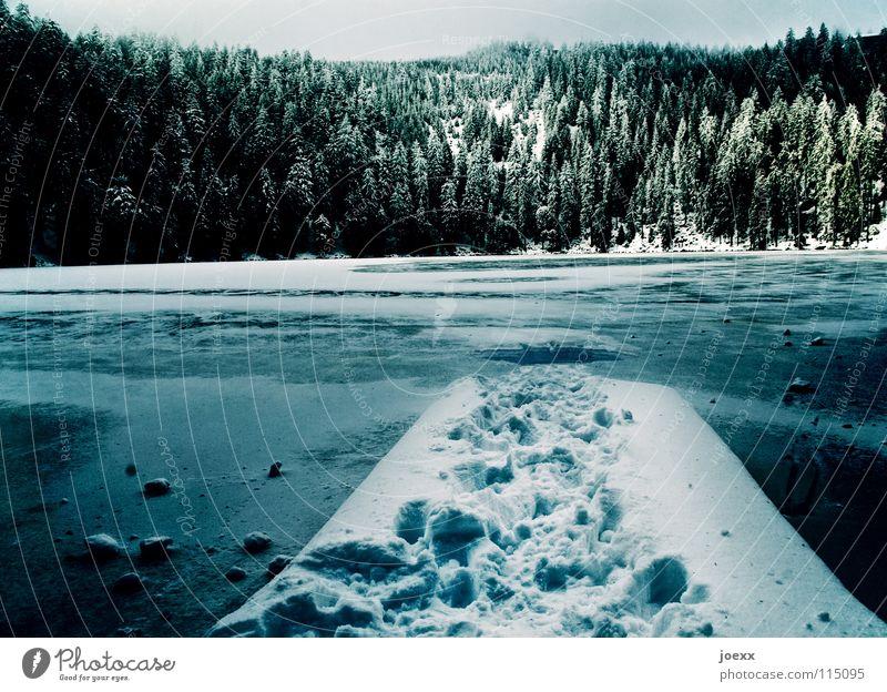 Weg unters Eis abgelegen Angst Gebirgssee Bergwald dunkel Einsamkeit Eisbaden kalt Schlittschuhlaufen Ferien & Urlaub & Reisen frieren Fußspur ruhig Märchen