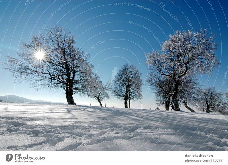 Weihnachtskarte 25 (die letzte !) Himmel Natur blau weiß Baum Ferien & Urlaub & Reisen Sonne Winter Einsamkeit kalt Schnee Berge u. Gebirge Horizont Deutschland