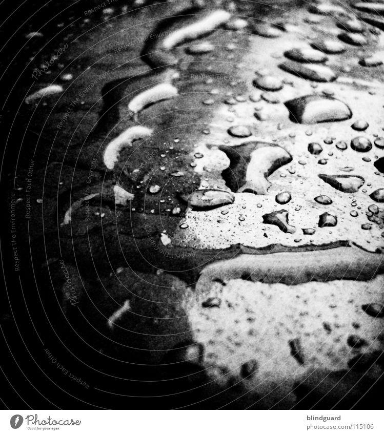 Black Rain Again Nahaufnahme glänzend nass feucht Licht Unwetter rosa schwarz dunkel Umwelt Makroaufnahme Wasser Herbst Statue Lampe Wassertropfen light