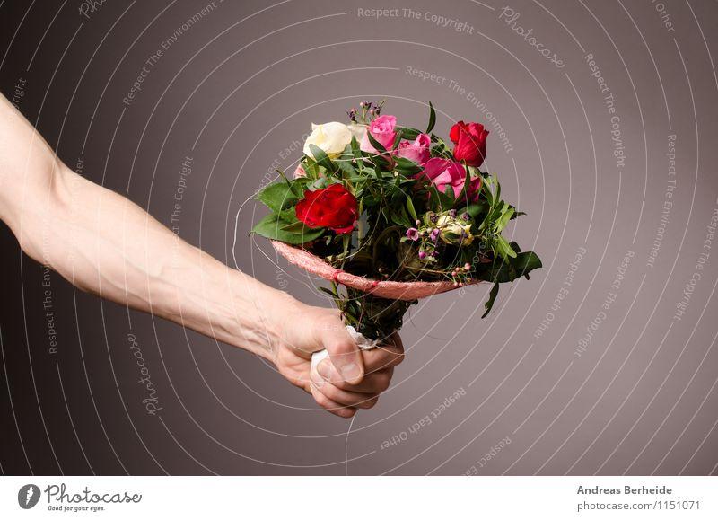 Bitte schön ! Natur Pflanze Rose Blumenstrauß Liebe springen rosa bunch flowers man fresh giving color natural holiday greeting blossom petal geben überreichen