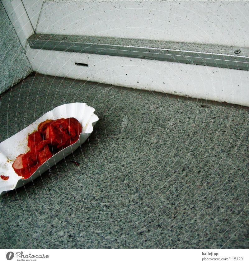 mittagspause Curry Wurstwaren Bratwurst Imbiss Ketchup Saucen rot Fastfood Billig Rest Müll Geschmackssinn Fleisch Thüringen Grill Kräuter & Gewürze Ernährung