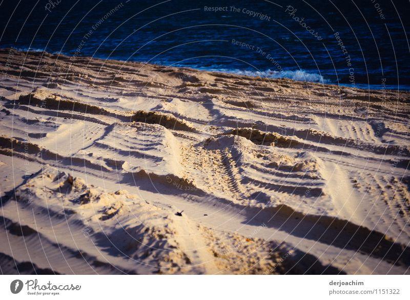 Spuren im Sand Natur weiß Sommer Wasser Meer Freude Leben Bewegung Sand Wellen Insel Ausflug Schönes Wetter einzigartig entdecken Autofahren